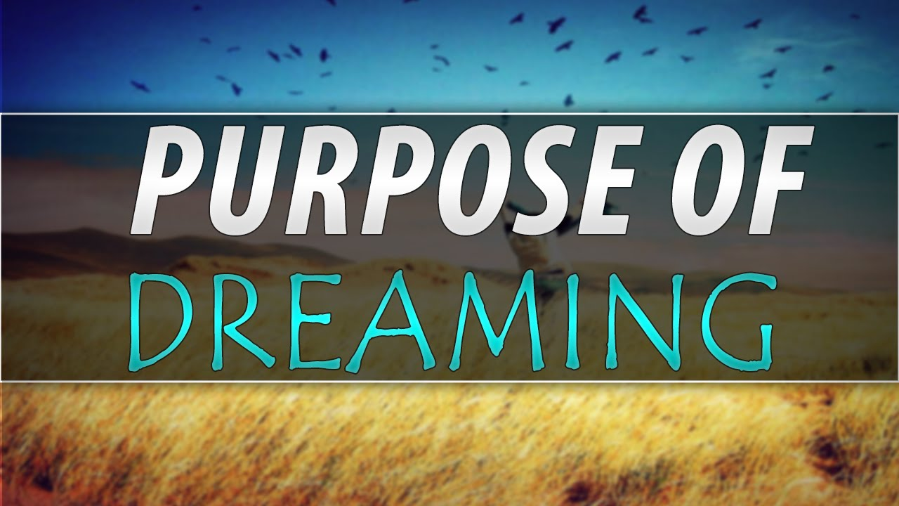 What is the purpose of dreaming?