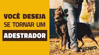 Você quer se tornar um adestrador de cães?