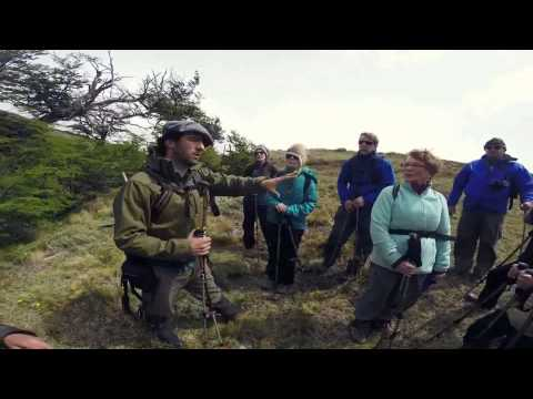 Science & Tourism with Patagonia Bagual