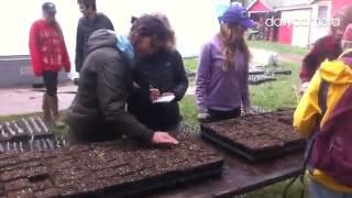 Volunteers work at Cure Farms in Boulder