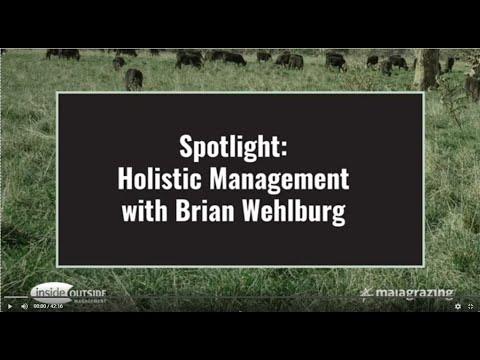 Spotlight Holistic Management