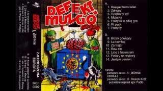 Siwy (Defekt Muzgó) & Para Wino - Zjednoczona Europa (FULL ALBUM, 1993)