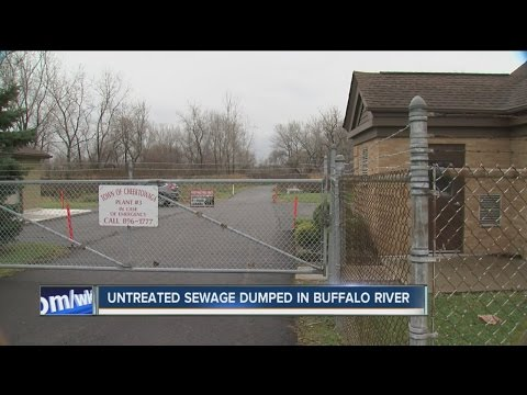 Untreated sewage dumped into Buffalo River