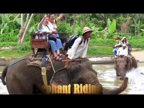 TRIPS BALI TOUR & ACTIVITIES