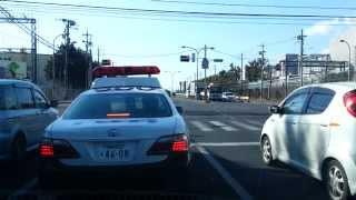 ハザードでお礼する栃木県警機動警ら隊のパトカー thumbnail