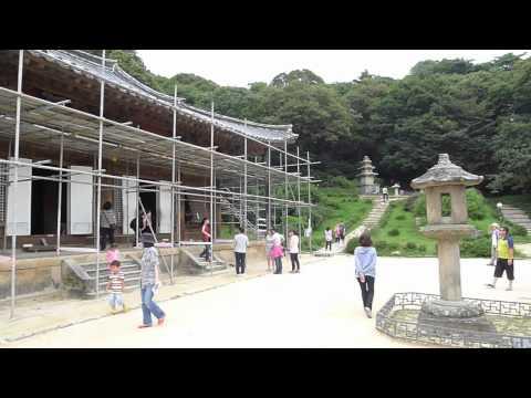 Korea Adventure #13 (Buseoksa Temple & Seoul Zoo)