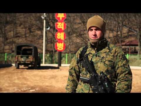 Working Like a Military Working Dog