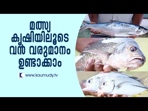 Huge profit from fish farming | Haritham Sundaram EP 115 | Kaumudy TV