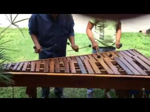 Carta Jugada En Marimba