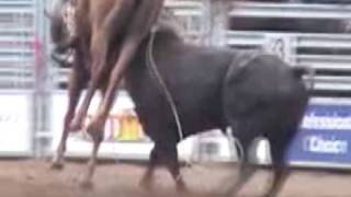 Rodeo Horse Fatally Gored by Bull at High School Rodeo