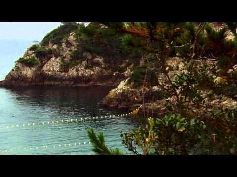 The Cove - Official® Trailer [HD]