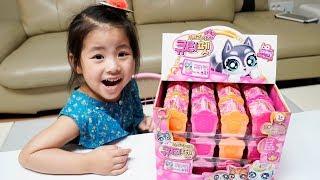 엄청 많은 상자들을 열어봤어요!! 서은이의 서프라이즈 큐티펫 오픈 Surprise Cute Pet Toys