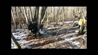 видео Силовики уничтожили в Дагестане «лабораторию смерти»