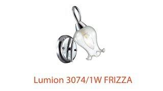 Видеообзор Lumion 3074/1W FRIZZA
