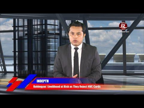 Rohingya Daily News 17 January 2017