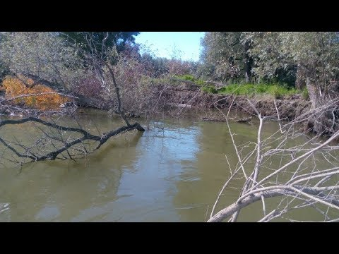 Поиск и ловля щуки с эхолотом Garmin Striker 4dv - YouTube
