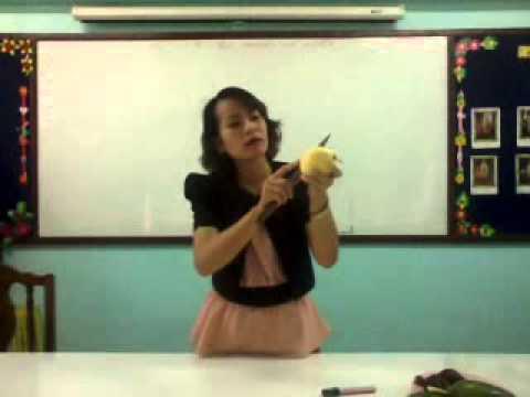 คลิปการสอนอนุบาล  (หน่วยผลไม้)