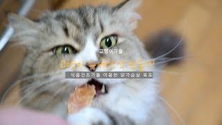 고양이 수제간식 만들기 - 닭가슴살 육포