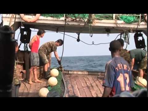 earth report   stolen fish 1