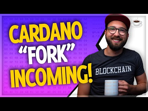 Cardano update, Elrond, BTC price analysis & more! // Crypto Over Coffee ep.52