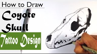 How to Draw a Coyote Skull - Skull Drawings