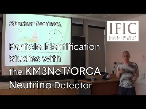 Moritz Lotze | Particle Identification Studies with the KM3NeT/ORCA Neutrino Detector