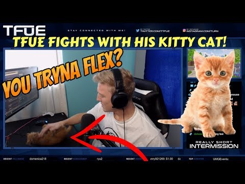 TFUE FIGHTS HIS CAT ON STREAM! (Fortnite Stream Highlights)