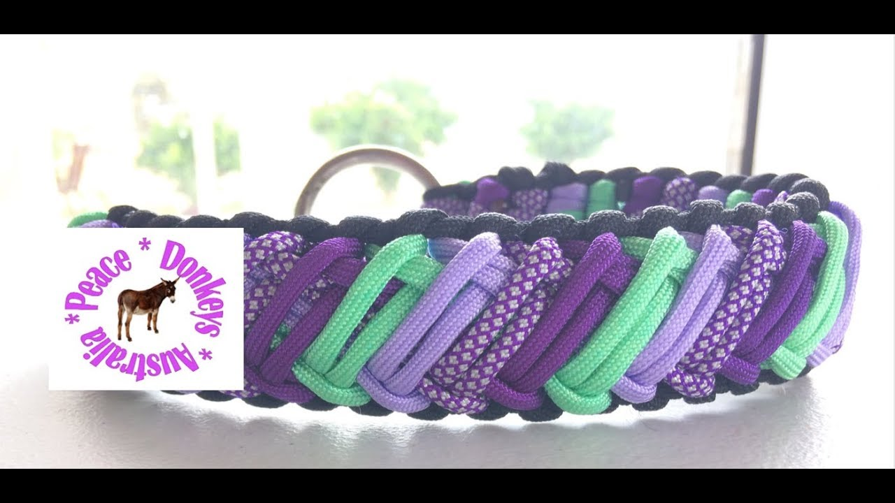 Five Colour Zed Z Pattern Paracord Dog Collar Youtube