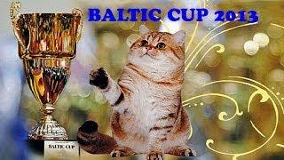 КУБОК БАЛТИИ 2013 РИГА Выставка кошек