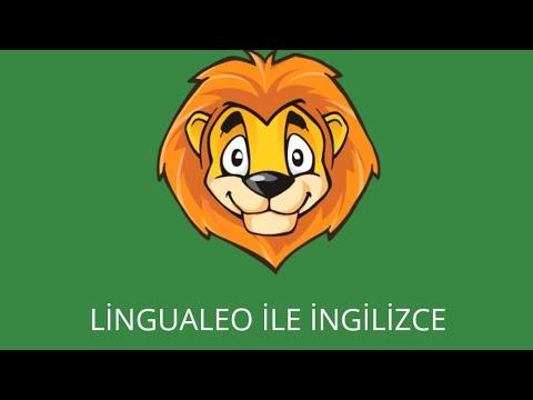 Lingualeo ile İngilizce