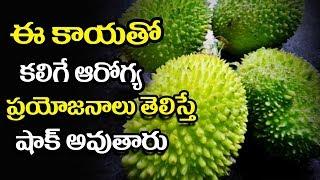 Health Benefits Of  Teasel Gourd (kakrol ) -  Mana Arogyam Telugu Health Tips