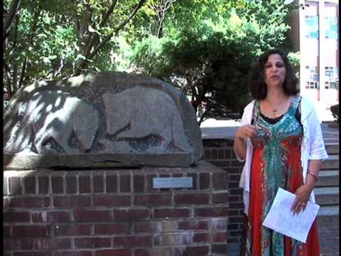 Tour of Public Art in Downtown Reading, PA
