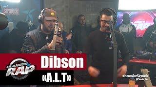 Download [EXCLU] Dibson