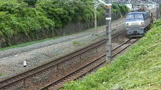 2019/06/10 JR貨物 今日の8090レ(レール輸送) EF66-123[吹]+日鐵チキ18B