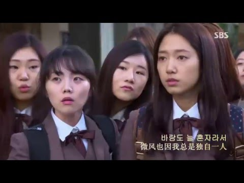 Story (The Heirs OST) - Park Shin Hye