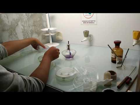 Perbannyakan jamur fusarium
