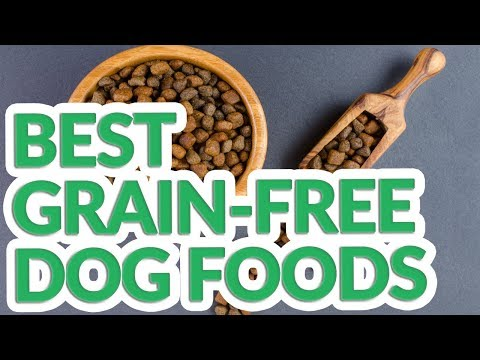 Best Grain Free Dog Food 2019 - 9 TOP Grain Free Dog Foods
