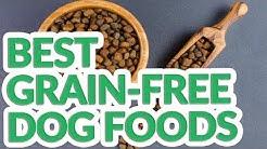 Best Grain Free Dog Food 2019 - 9 TOP Grain Free Dog Foods