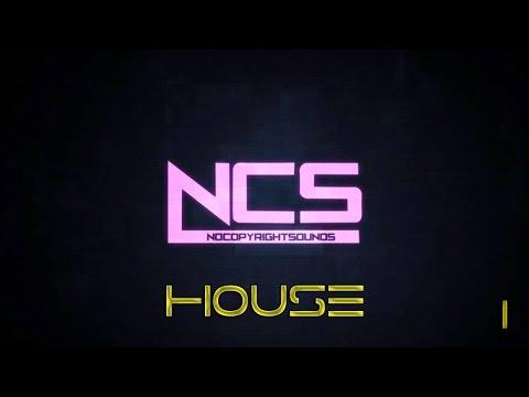NCS:House (30 Minutes Mix) #1