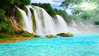 Healing Meditation Music, Relaxing Music, Music for Stress Relief, Background Music, ☯3195