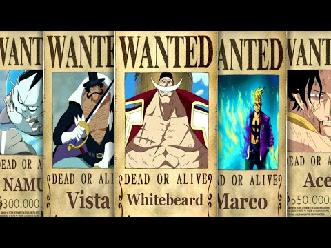 One Piece : WHITEBEARD's Crew Members' BOUNTIES ...