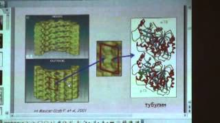 Физические исследования и биология | М.А.Ходорковский | Физфак СПбГУ | Лекториум