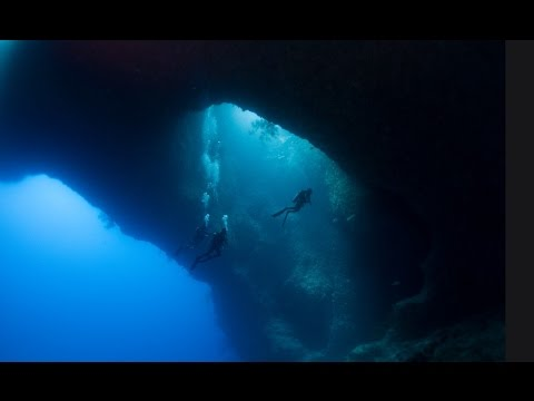 Diving Palau with Geoffrey Kent