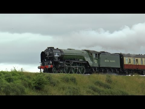 60163 `Tornado` The Torbay Express 1z27/1z28 @ Newton st Loe 12-07-15