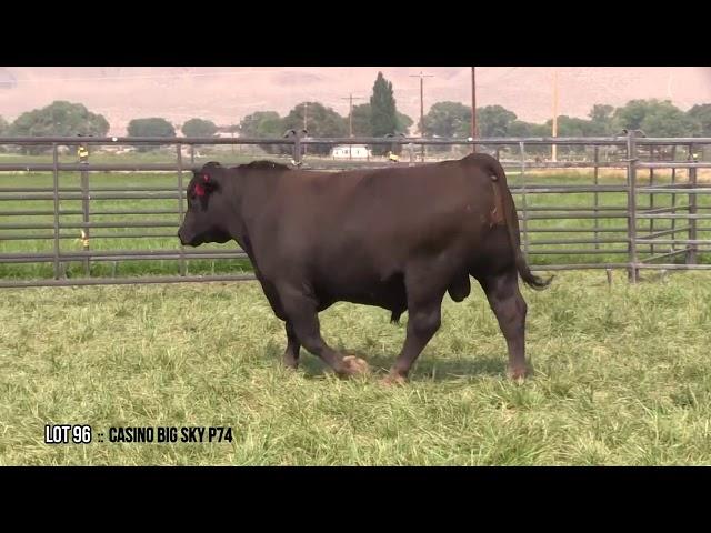 Dal Porto Livestock and Rancho Casino Lot 96