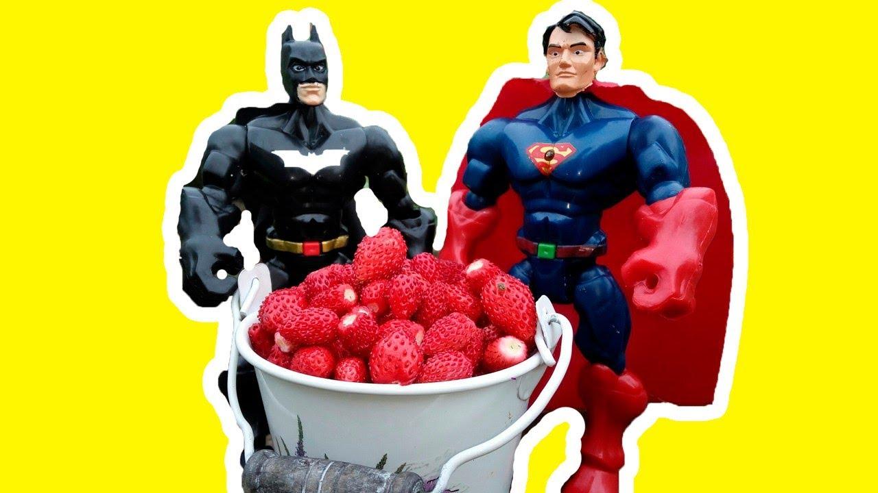 #СУПЕРГЕРОИ делают ДОБРЫЕ дела! #СУПЕРГЕРОЙ ХАЛК, Бэтмен и Супермен собирают урожай. Видео для детей