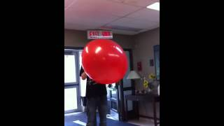 That is the biggest balloon by Robert