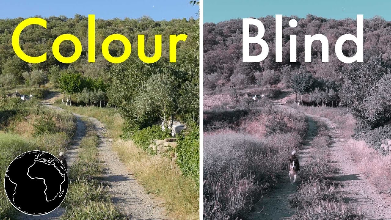 How Color Blindness Works Youtube,White Marble Tile Kitchen Countertops