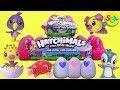 default - Hatchimals Colleggtibles 12 Pack Egg Carton Season 2