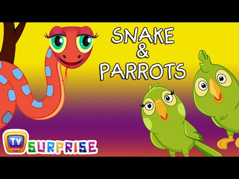 Thumbnail: Bedtime Stories for Kids in English - Snake & Parrots - Surprise Eggs Toys ChuChu TV Story Time